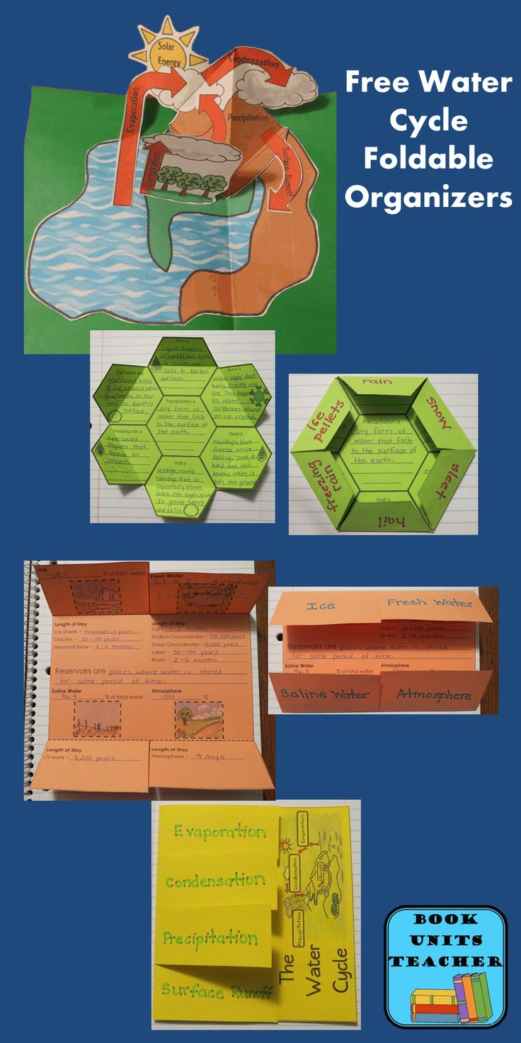 Your students will have a blast creating these FREE easy-to-assemble water cycle foldable organizers.