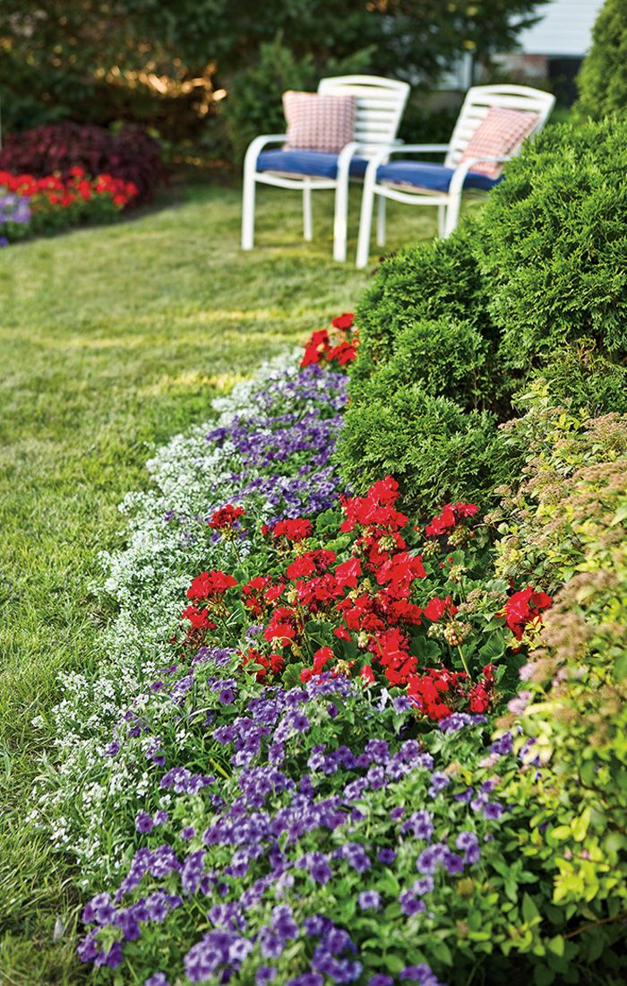 Plant A Beautiful Mix Of Red, White And Blue Varieties For Your 4th Of July