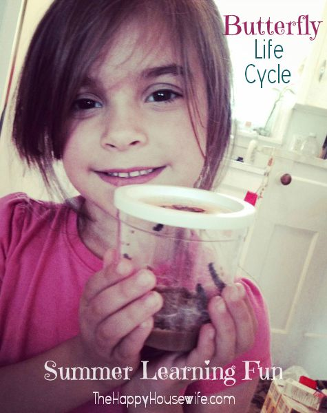 Butterflies make for a fun spring and summer learning adventure, especially for little kids. | The Happy Housewife