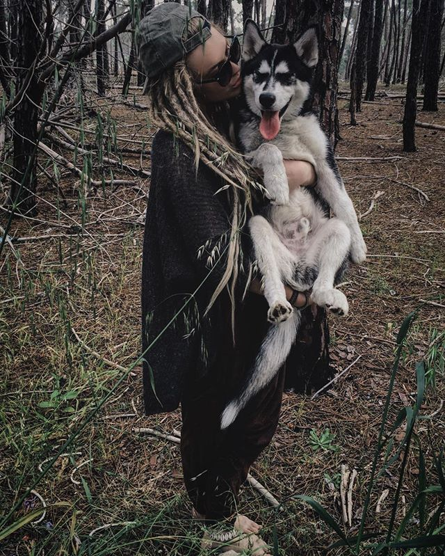 •| 》•4 month old Wolf Grimm•《 |•