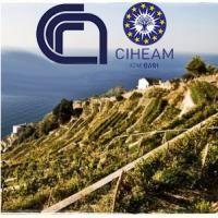Agricoltura sostenibile nel mare nostrum - Istituto agronomico mediterraneo Bari