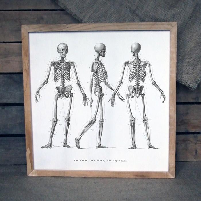 bones print on oak £199