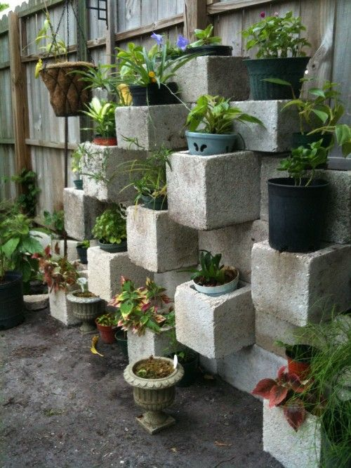 Cinder blocks are not just for holding up your TV.... image by ecken I think this is a great idea to build on and refine.  Create a vertical garden easily.  The stacking options of cinder blocks ar...