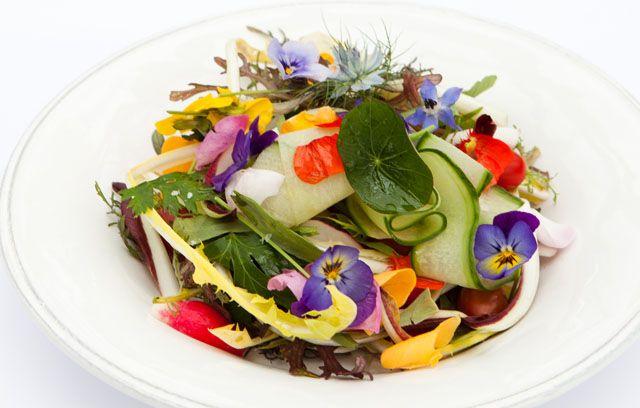 Chef Greg Malouf's Salad Shirazi