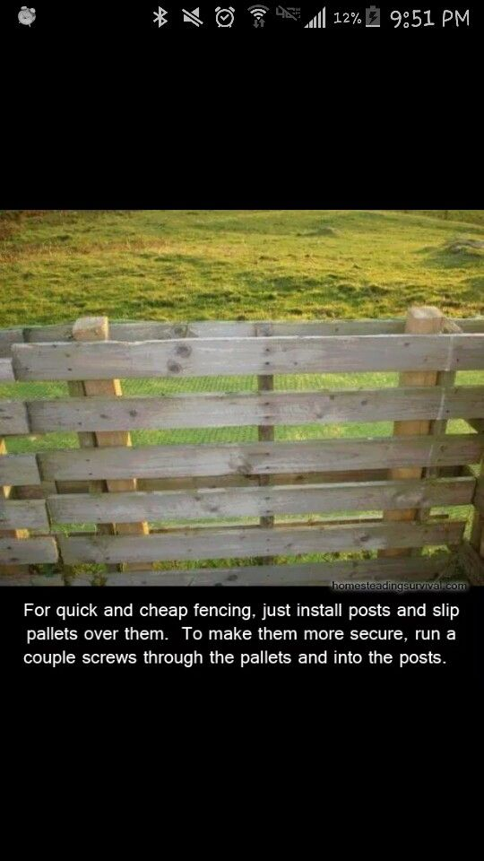 Quick And Easy Fencing Idea For Privacy Fence A Fence To