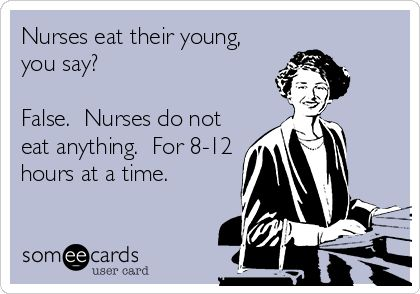 Nurses eat their young, you say? False. Nurses do not eat anything. For 8-12 hours at a time. Who needs the gym...just go to work! Lol!!
