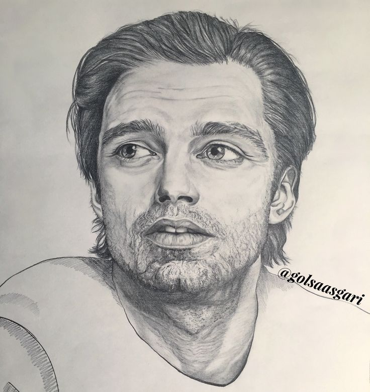 Portrait of Sebastian Stan