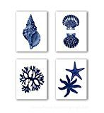 This is a set of 4 of Navy Blue Seaweed, Starfish and Seashells reproduction art prints, adapted from 1800s era antique natural history book plates that has been digitally restored and professionally reproduced.  * Image size 8x10 inch, print...