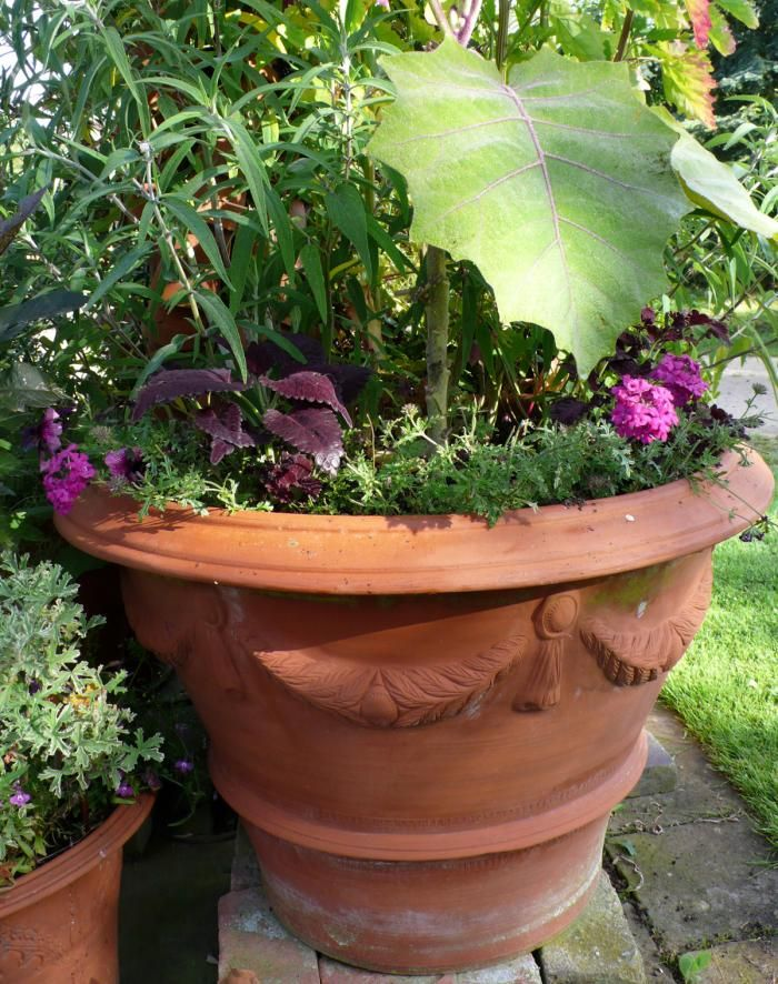 Whimsical Planters from a UK Institution Gardenista: Institut Gardenista, Uk Institut