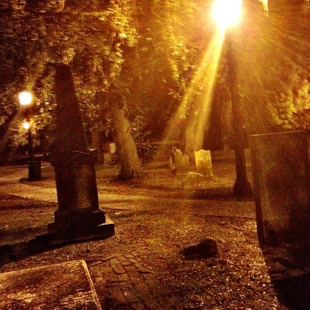 Haunted Savannah Cemetery - Anyone in the mood for a haunted tour of Savannah? - @Patricia Nickens Derryberry Savannah- #webstagram