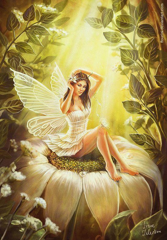 Fairy, Fee