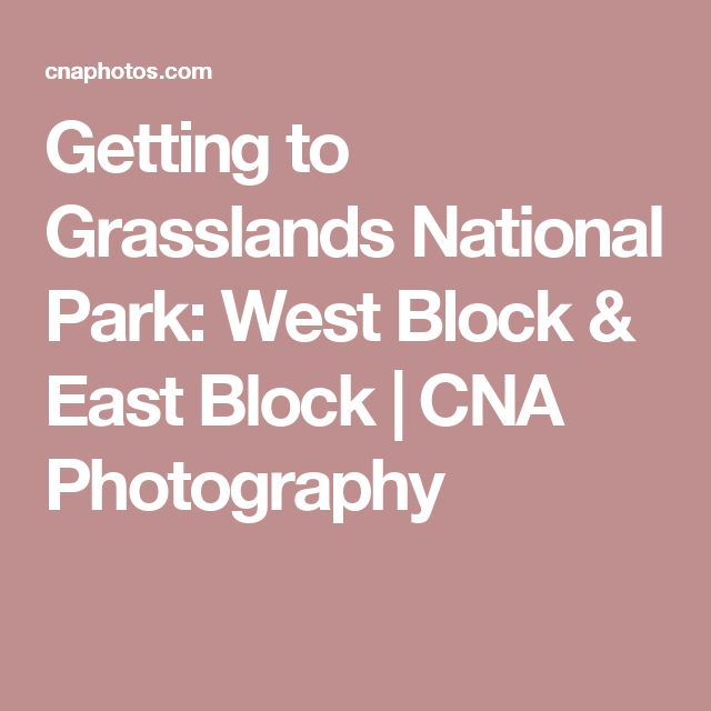Getting to Grasslands National Park: West Block & East Block   CNA Photography