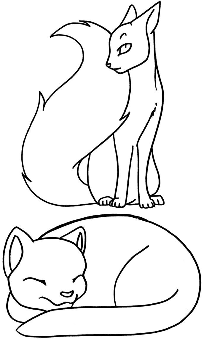 Warrior Cat Coloring Page Youngandtae Com In 2020 Cat Coloring Page Cat Coloring Book Warrior Cats
