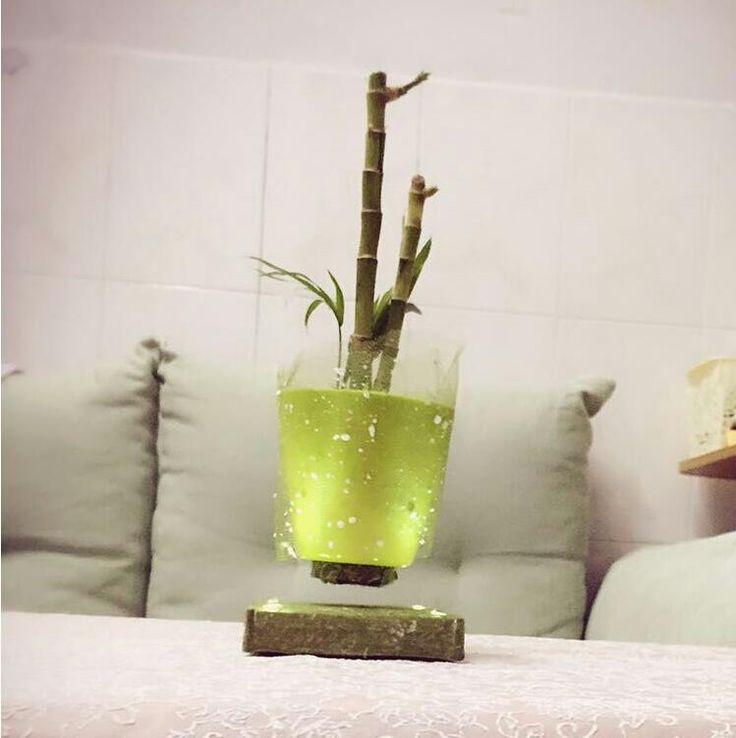 Simple air bonsai.