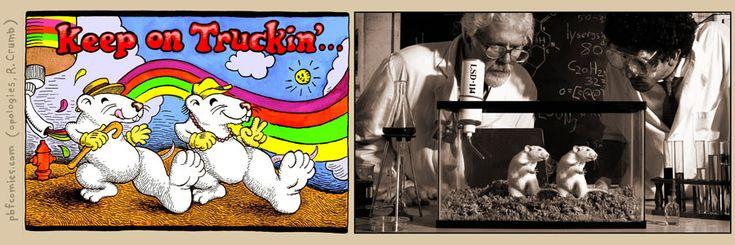 Ha... LSD.: Silly Shit, Nicholas Gurewitch, Sick Humor, Perry Bible, Funky Junk, Internet Diversity, Lorenzo St., Humor Internet, Bible Fellowship
