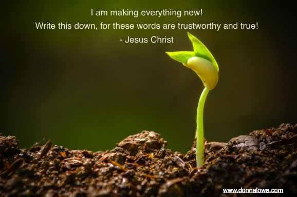 """Jesus said, """"I make EVERYTHING new. These words are trustworthy and true!"""""""