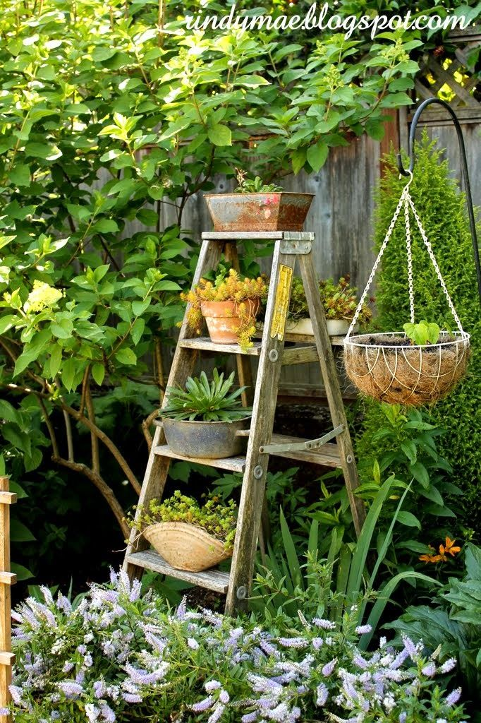 17 best images about g ladders in the garden on pinterest for Old wooden ladder projects