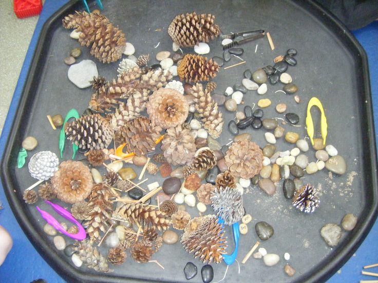 Natural items with tweezers - fine manipulative skills