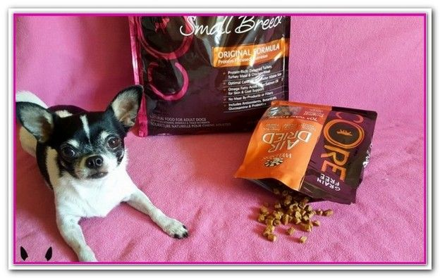 Best Dog Food For Skin Allergies At Petsmart Best Dog Food Dog