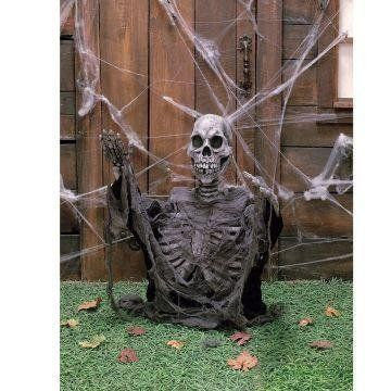 """30 Out of the Ground Skeleton by Seasons Usa. $81.23. Manufactured to the Highest Quality Available.. Design is stylish and innovative. Satisfaction Ensured.. Great Gift Idea.. This 30"""" Out of the Ground Skeleton is made of latex and measures approximately 31.5"""" high x 20"""" wide."""