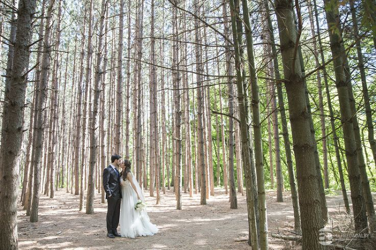 Kortright Centre Wedding Photographers | Jessica & John