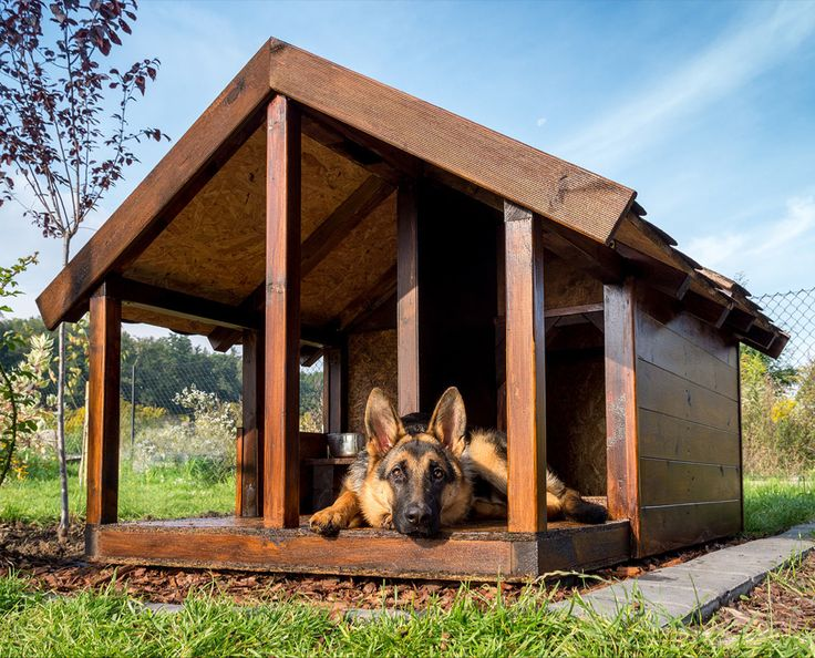 Guide To The Best Indoor And Outdoor Dog House Heater Options Outdoor Dog House Cool Dog