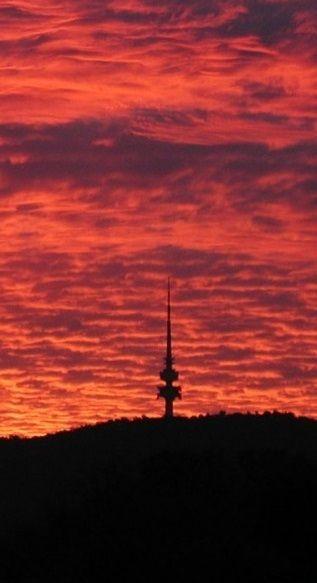 Black Mountain - Canberra - Australia