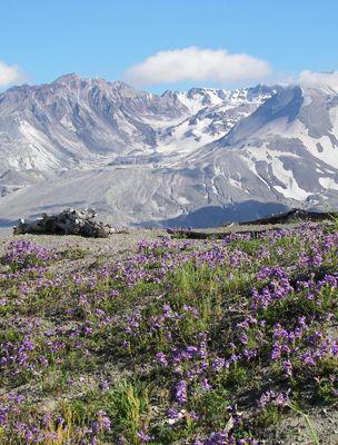 A Mount St. Helen