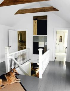 grey painted wood floors!? yes.  and the dog is a great touch. i <3 dogs