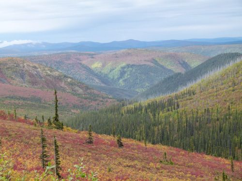 Driving the Top of the World Highway from Dawson City to Tok, Alaska is a beautiful September journey.