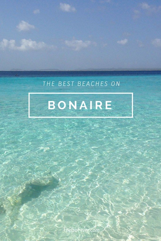 On top of being a diver's paradise, the Caribbean island of Bonaire boasts some gorgeous beaches with incredibly clear waters. Check out the best beaches on Bonaire!