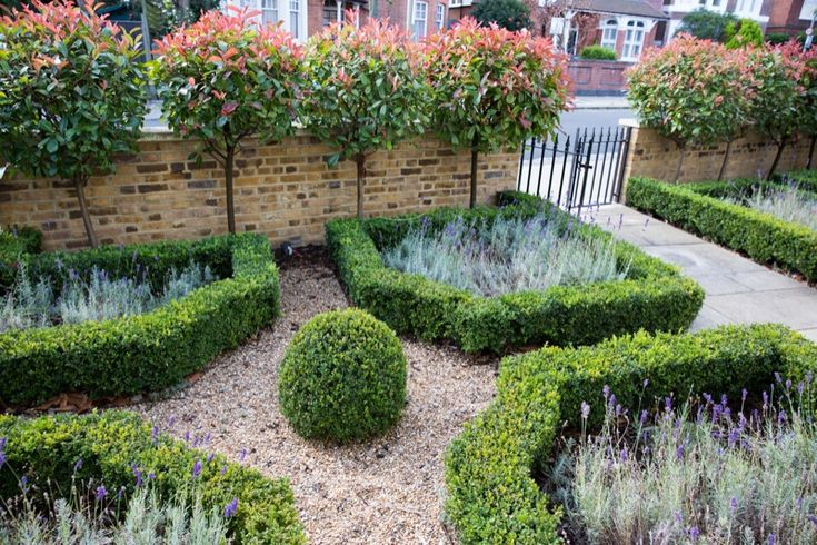 17 best images about front gardens on pinterest gardens for Garden design ideas with hedges