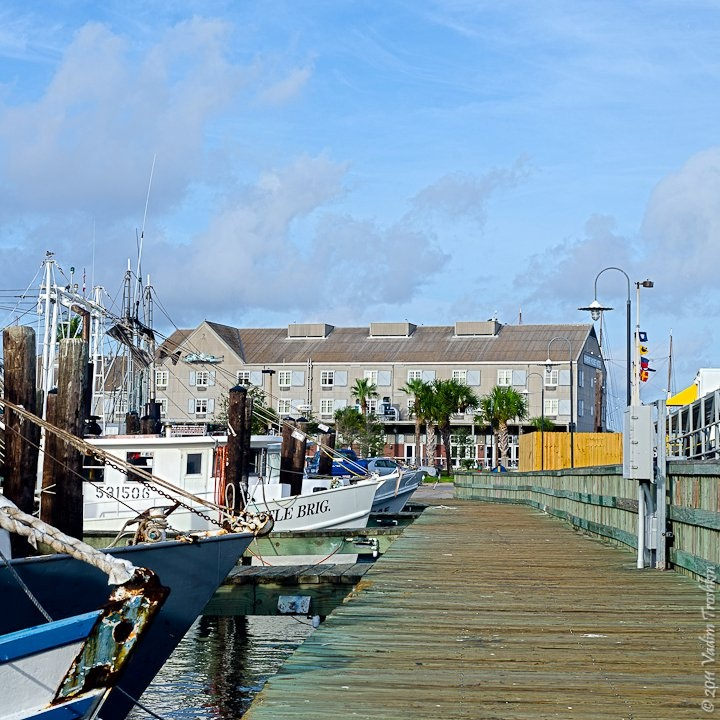 44 best i like it lil images on pinterest shrimp for Good fishing spots in galveston