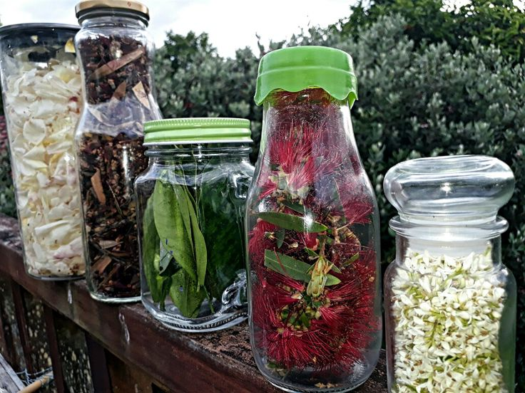 Natural alternatives to glitter. Plus leaves from the grapefruit tree for sensory play. Will give dehydrating it a go!
