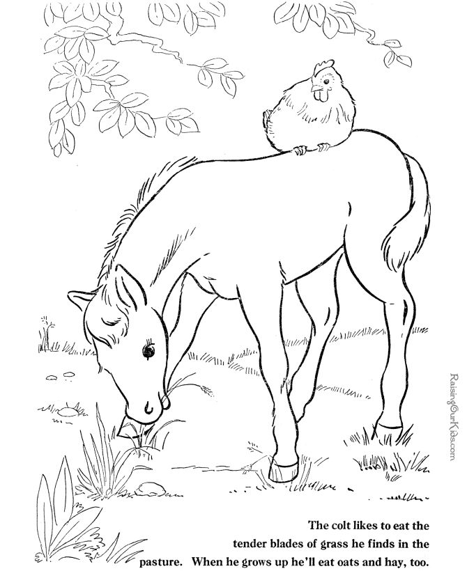 These free printable horse coloring picture of farm animals provide hours of online and at home fun for kids
