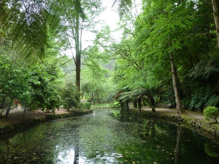 alfred nicholas gardens. sassafras