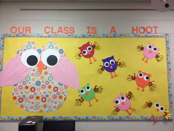 Classroom Bulletin Board Ideas With Owls ~ Best owl classroom door ideas that you will like on