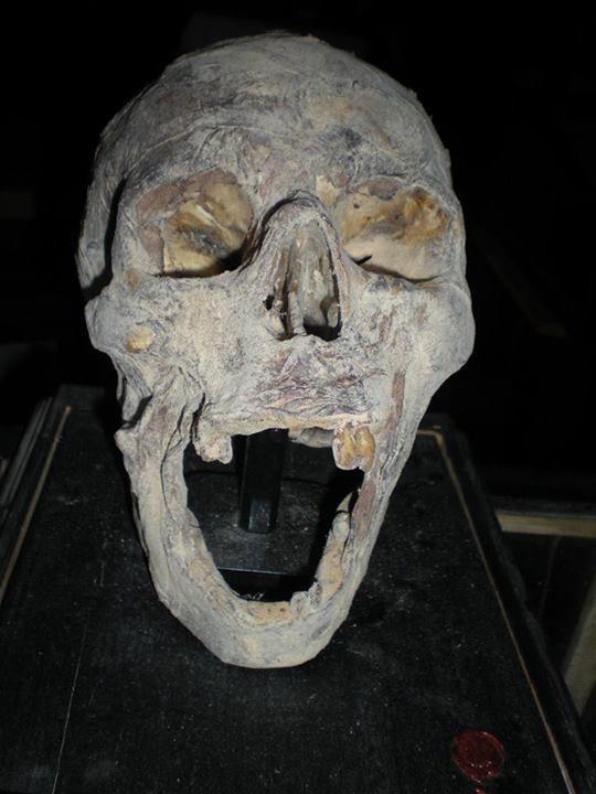 Antico teschio... #teschio #mummia