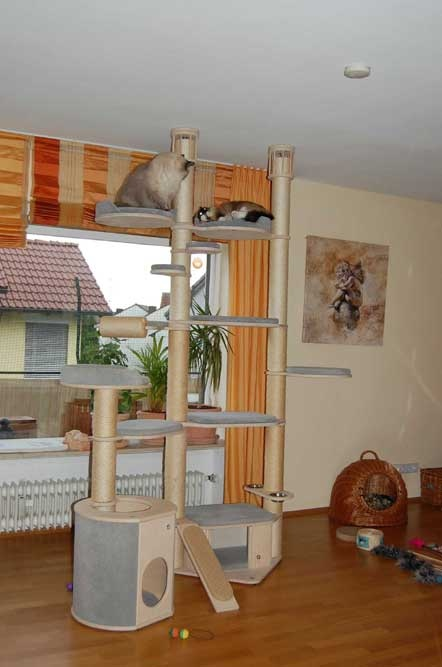 217 best cat houses catifying images on pinterest pets cat houses and cat stuff. Black Bedroom Furniture Sets. Home Design Ideas