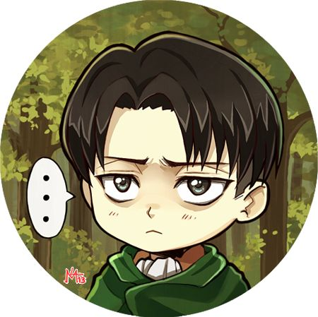 he is literally so cute and fed up with your shit | SIE ...Attack On Titan Levi Chibi Cute