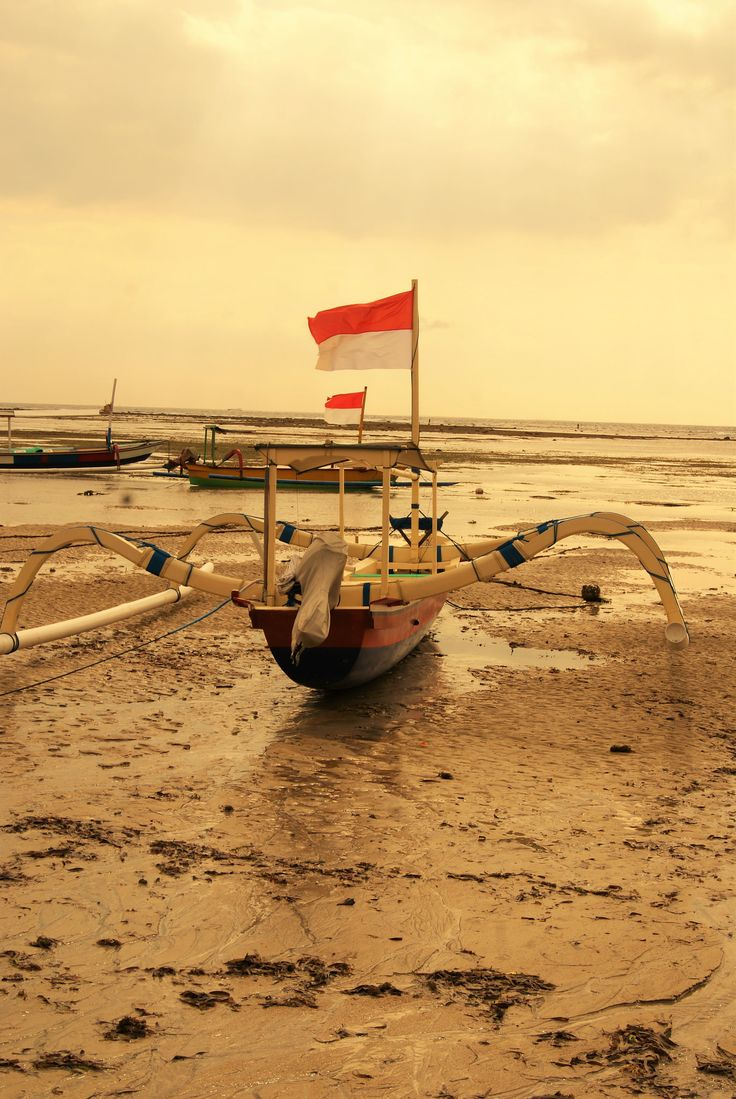 "https://flic.kr/p/HgpjeY | ""E i gatti guardano nel sole mentre il mondo sta girando senza fretta"" De Gregoi 