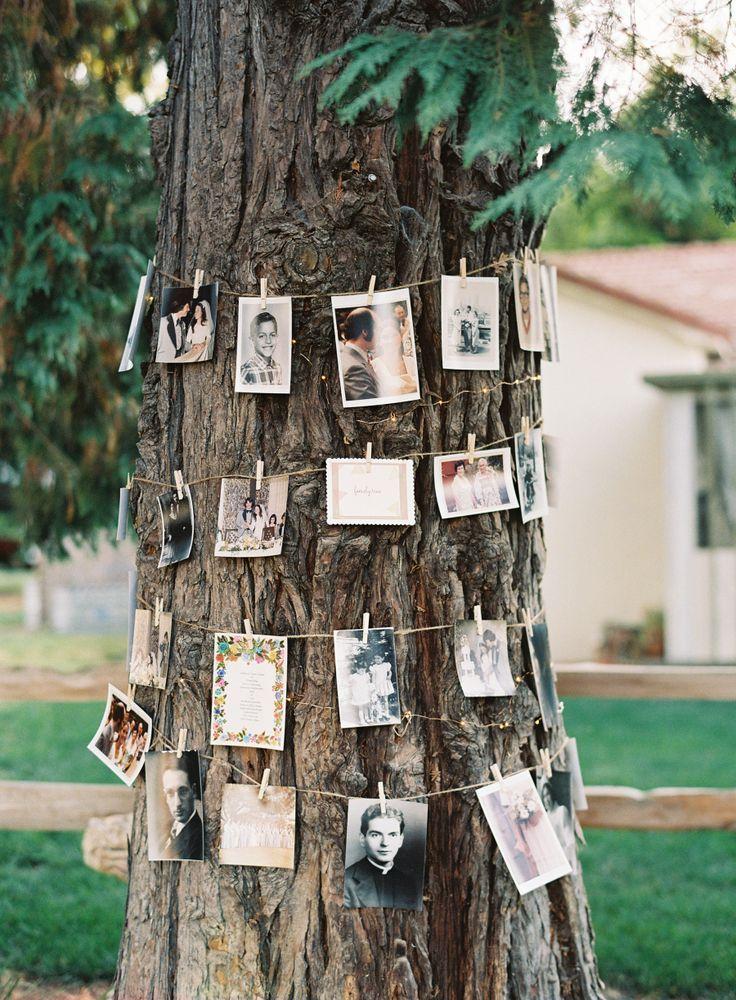 Foto-Display-Ideen für Hochzeiten im Garten und im Wald   – Looking into the Future