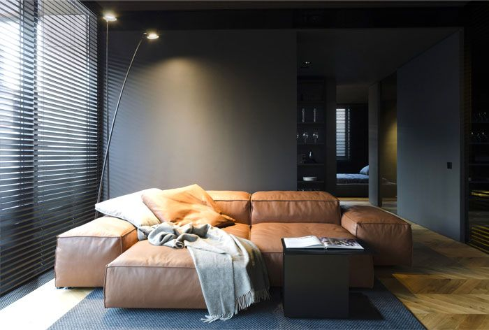 Small Masculine Apartment In Dark Color Schemes Apartment Living Room Home Decor Bedroom Small Room Design