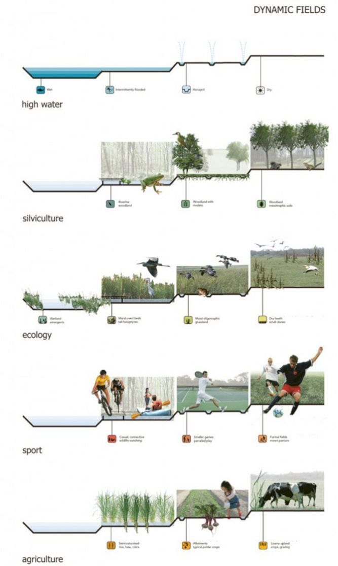 The Best Landscape Plan Drawing Section No 118 In 2020 Landscape Diagram Landscape Architecture Design Landscape Plans