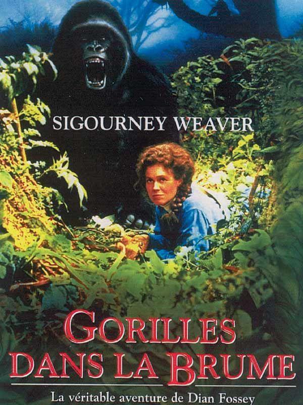 Evocation de la vie de Dian Fossey, une anthropologue qui consacra sa vie à l'étude et à la sauvegarde des gorilles. Elle fut sauvagement assassinée le 26 décembre 1985.