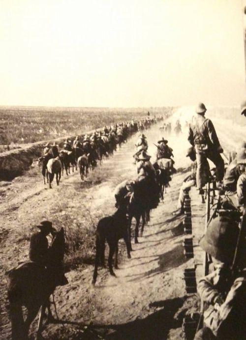 Movilización de la División del Norte hacia Celaya. 1915
