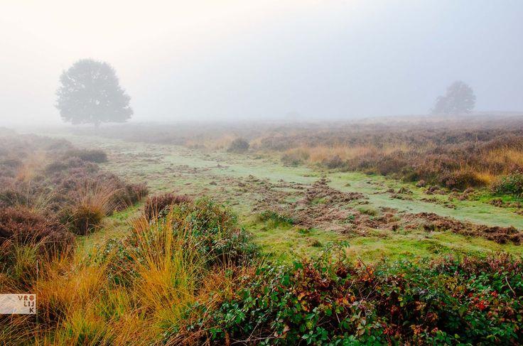 oktober mist
