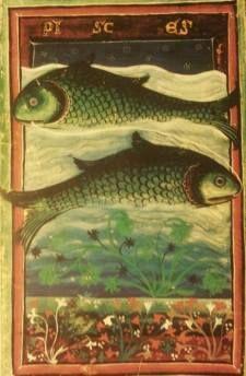 Miti e realta' del segno dei Pesci - Attualità - Astrologando: l'Oroscopo di MarieClaire.it