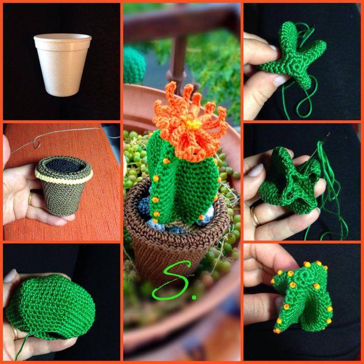 498 best piante grasse uncinetto images on pinterest for Il blog di sam piante grasse