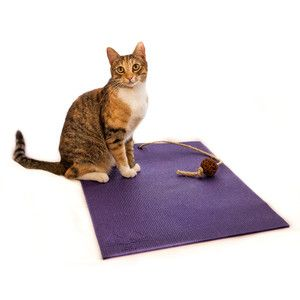 Cat Yoga Mat Toy Purple, £19.50, now featured on Fab.